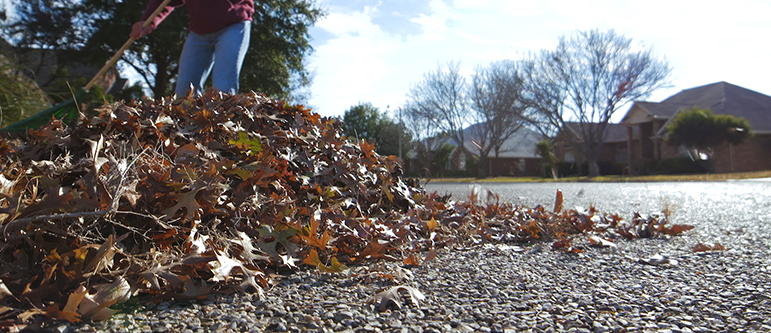 Leaf blowing video Home page