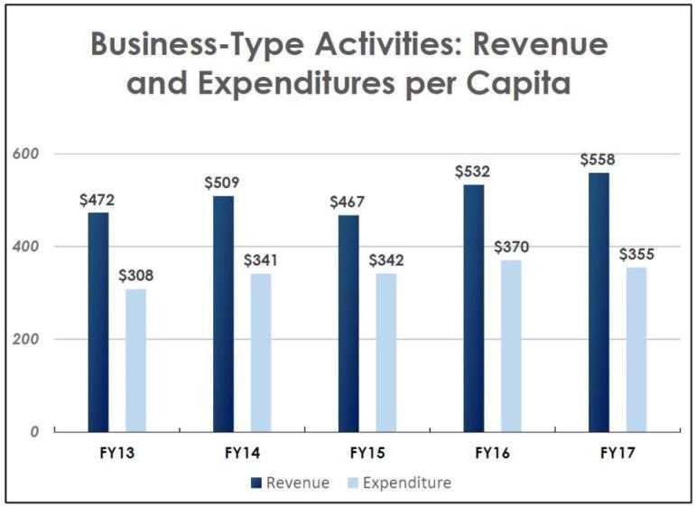 Business Type Activities